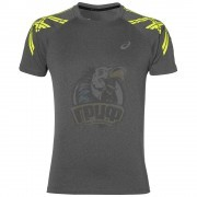 Футболка спортивная мужская Asics Stripe Ss Top (серый)