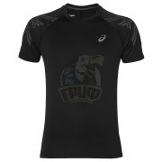 Футболка спортивная мужская Asics Stripe Ss Top (черный)