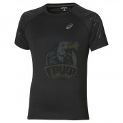 Футболка спортивная мужская Asics Stripe Top (черный)