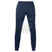 Брюки спортивные мужские Asics Essentials Pant (синий)