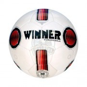 Мяч футзальный Winner Typhon Sala №4