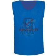 Манишка тренировочная Givova Casacca Pro Allenamento (синий)