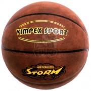 Мяч баскетбольный тренировочный Vimpex Sport Indoor/Outdoor №7