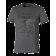 Футболка спортивная мужская Asics Graphic Tee (темно-серый)