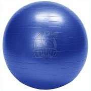 Мяч гимнастический (фитбол) HouseFit 75 см с системой антивзрыв + насос (синий)