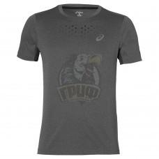 Футболка спортивная мужская Asics Stride Ss Top (серый)