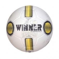 Мяч футзальный Winner Dynamic Sala №4