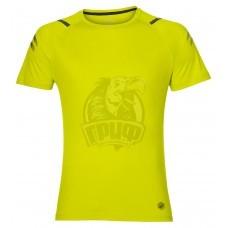 Футболка спортивная мужская Asics Icon Ss Top (желтый)