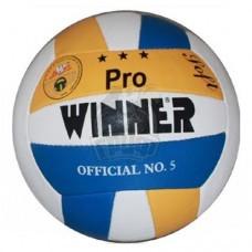 Мяч волейбольный тренировочный Winner Pro Soft (синий/желтый)