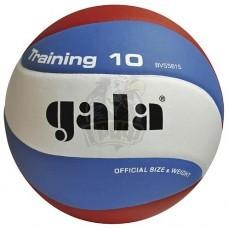 Мяч волейбольный тренировочный Gala Training 10