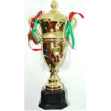 Кубок сувенирный HQ0101C