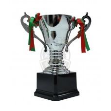 Кубок сувенирный F5-S (серебро)