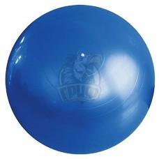 Мяч гимнастический (фитбол) Fora 75 см с системой антивзрыв (синий)