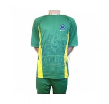Форма футбольная Ayoun (зеленый/желтый)